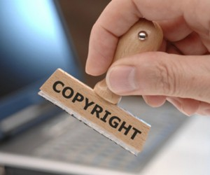 Nghị định số 88/2010/NĐ-CP Quy định chi tiết, hướng dẫn thi hành một số điều của Luật Sở hữu trí tuệ vàLuật sửa đổi, bổ sung  một số điều củaLuật Sở hữu trí tuệvề quyền đối với giống cây trồng